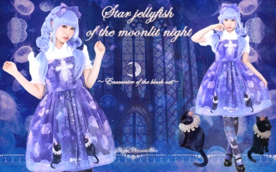 月夜の星海月 ~黒猫の出会い~